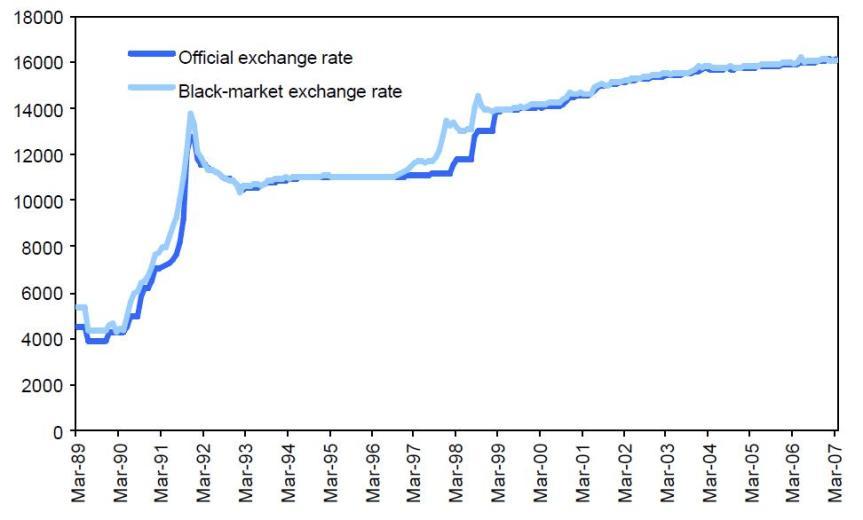 Grafico 6 Dong mercado negro y tasa oficial